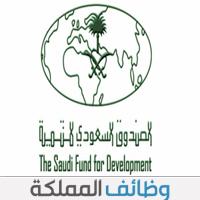 وظائف شاغره في الصندوق السعودي للتنمية