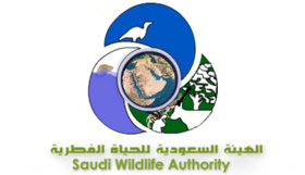 الهيئة السعودية للحياة الفطرية | وظائف رجالية شاغرة على بند 105